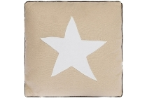 "cushion ""White Star"""