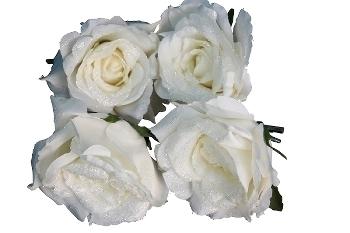 4er Set Rose  gefrostet mit Clip Weiß