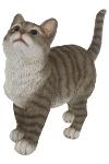 "Katze ""Liala"" grau getigert A"