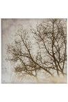 """Wandbild """"Soul"""" Golddruck Baum B 80/80"""