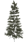 210CM HING FULL PE TREE WITH 1009 TIPS METAL STAND BOTTOM WIDTH:116CM